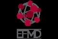 International Networks EFMD